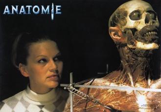 anatomy-german-2