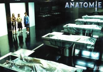 anatomy-german-3