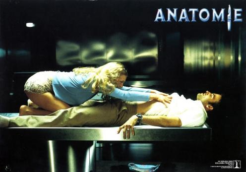 anatomy-german-8