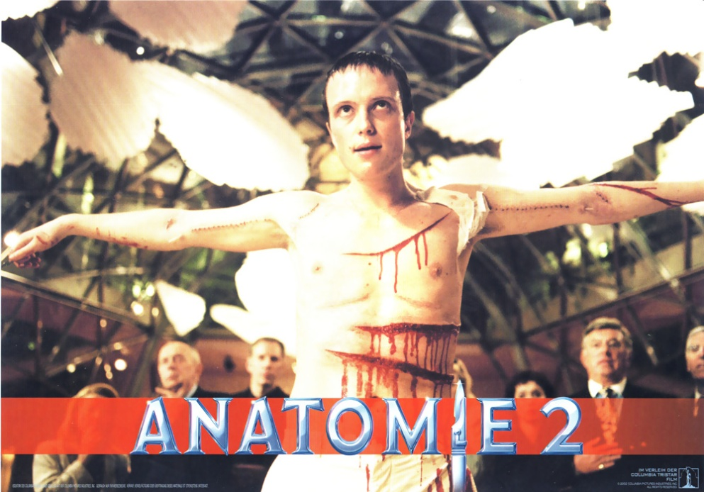 anatomy2-german-1