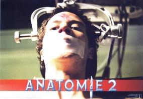 anatomy2-german-4