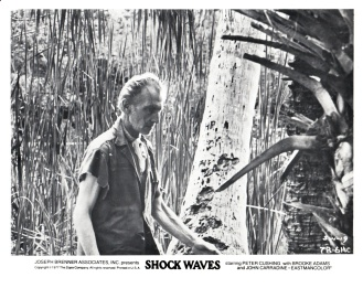 shockwaves-usa-3