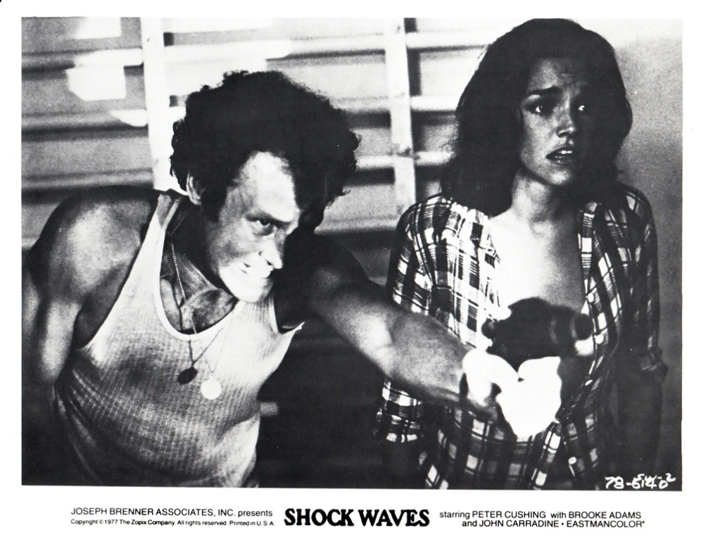 shockwaves-usa-4
