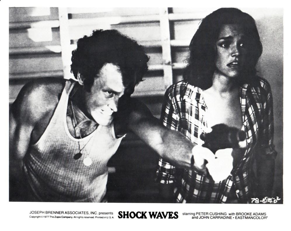 shockwaves-usa-4