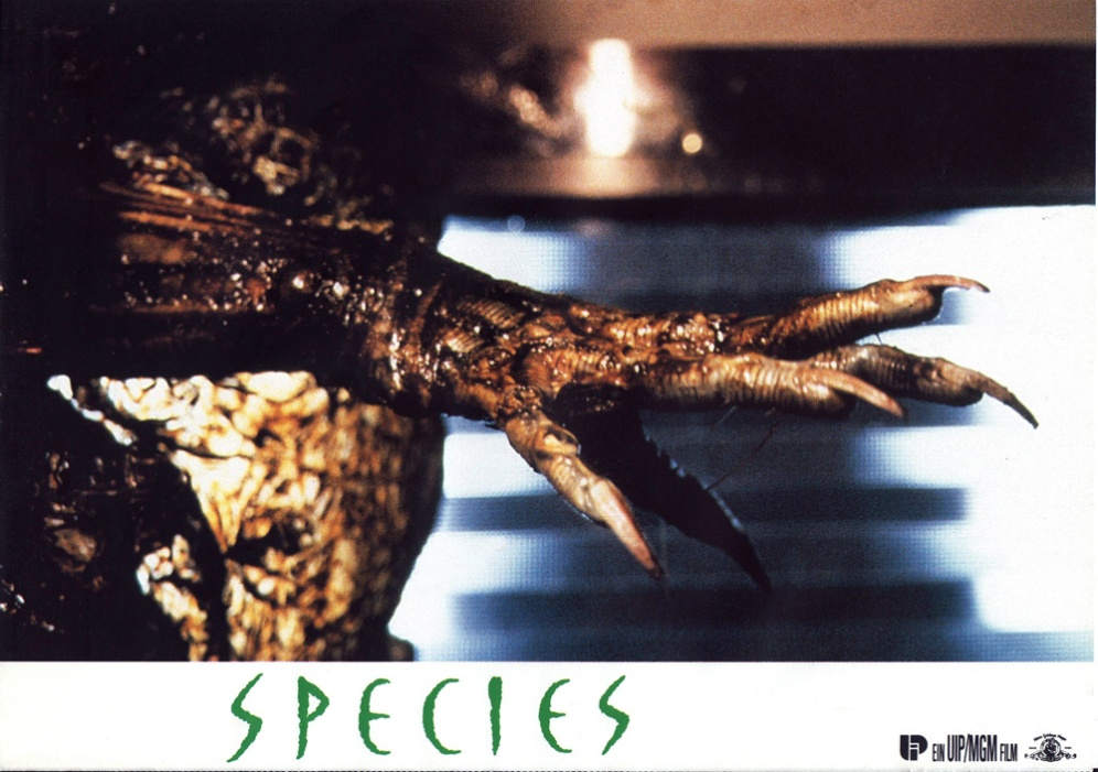 species-germany-05