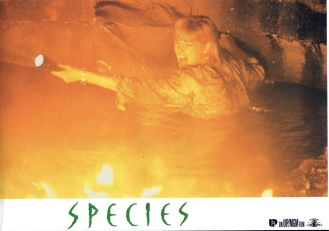 species-germany-07