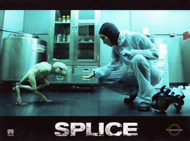 splice-1