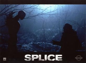 splice-5