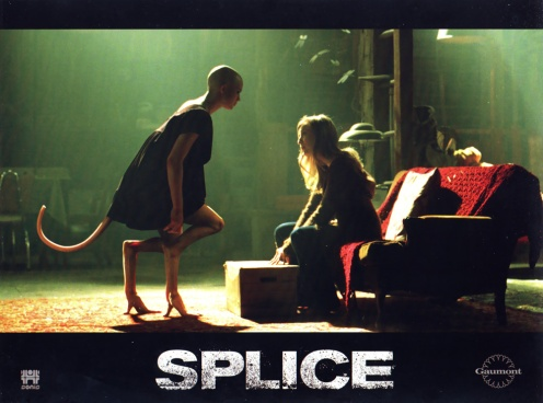 splice-8