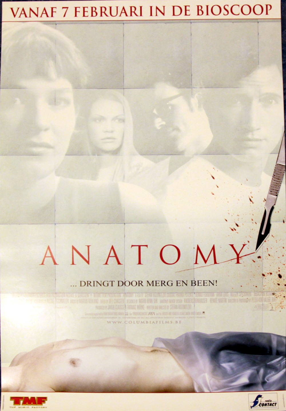 anatomy-belgium
