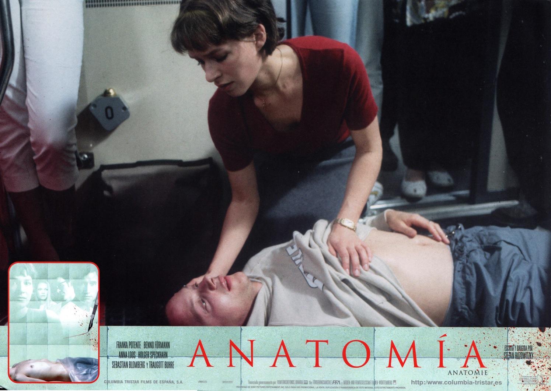 anatomy-spain-11