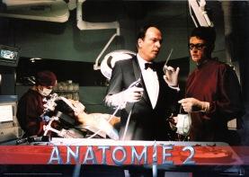 anatomy2-german-biglc-1