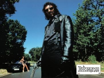dobermann-france-6