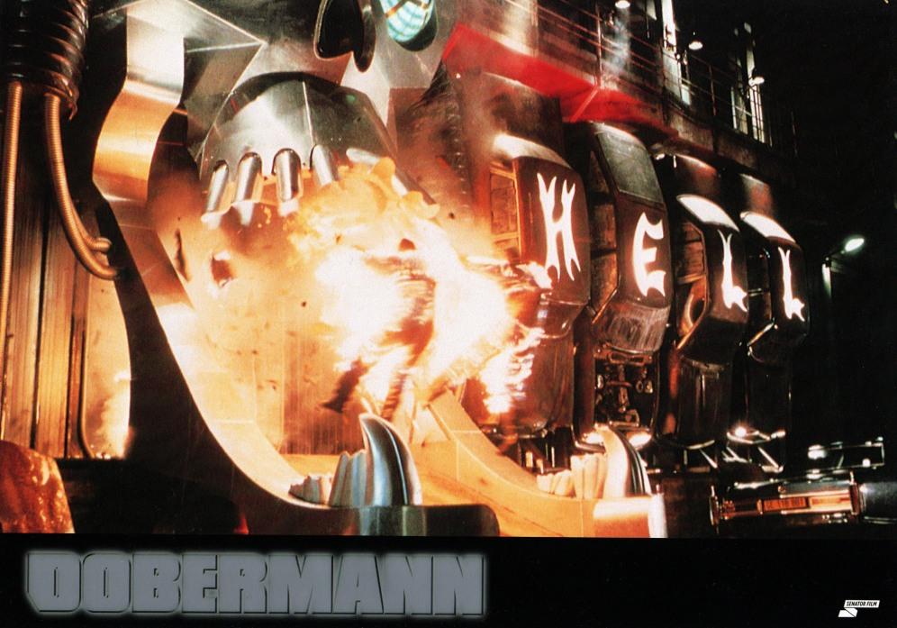 dobermann-germany-1
