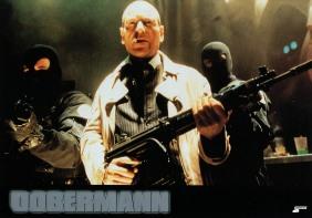 dobermann-germany-4