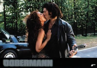 dobermann-germany-5