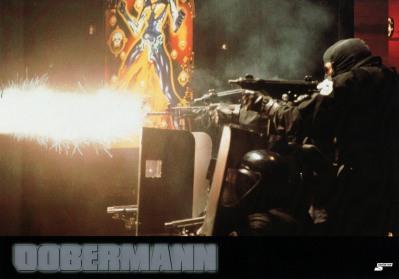 dobermann-germany-6