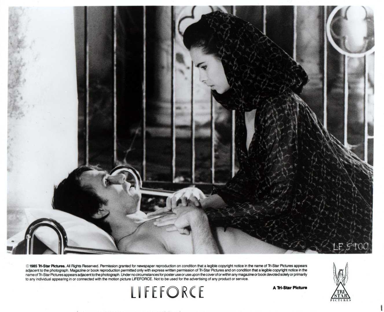 lifeforce-usa-2