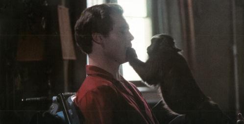 monkeyshines_05